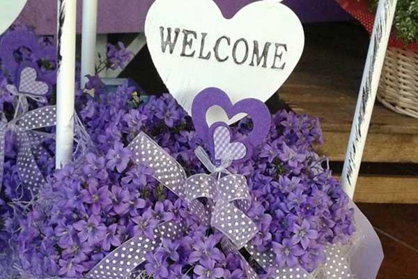idee regalo fiori e piante PADOVA