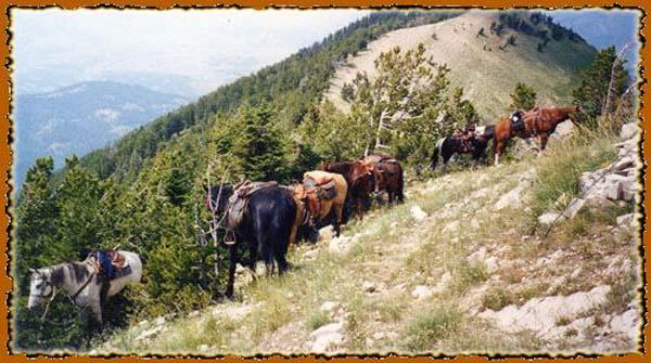 Bridger - Teton National Forest in Western Wyoming pack trip