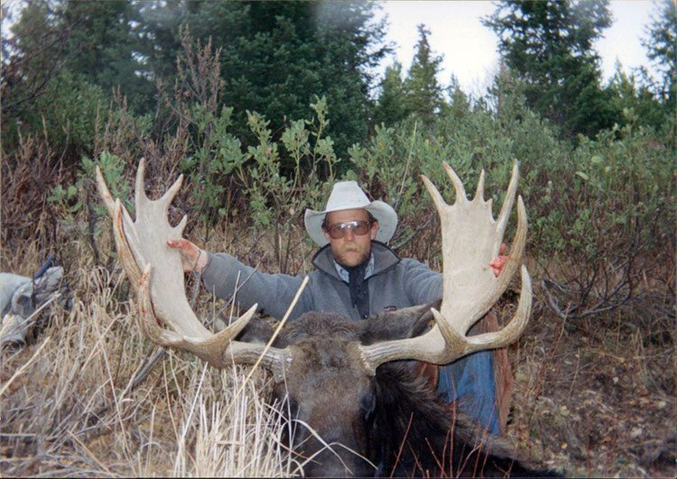 Wyoming moose hunting, Wyoming moose hunt, Wyoming Outfitter