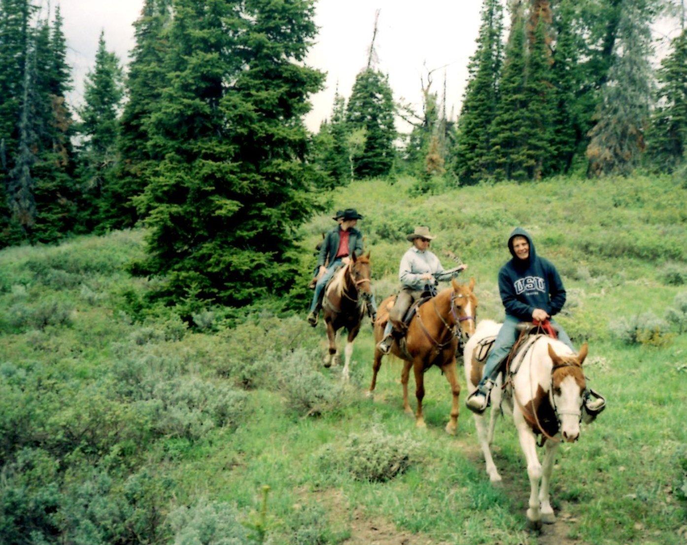 Wyoming horse back mountain trip Bridger - Teton National Forest in Western Wyoming