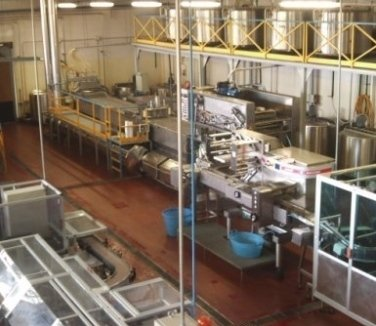 gelati all'ingrosso, produzione ghiaccioli, alimenti surgelati