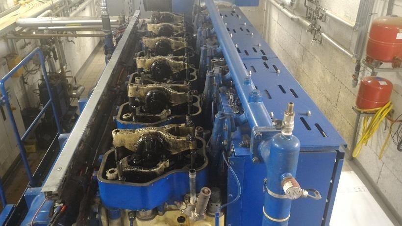 Vegetable oil engine - view of heads