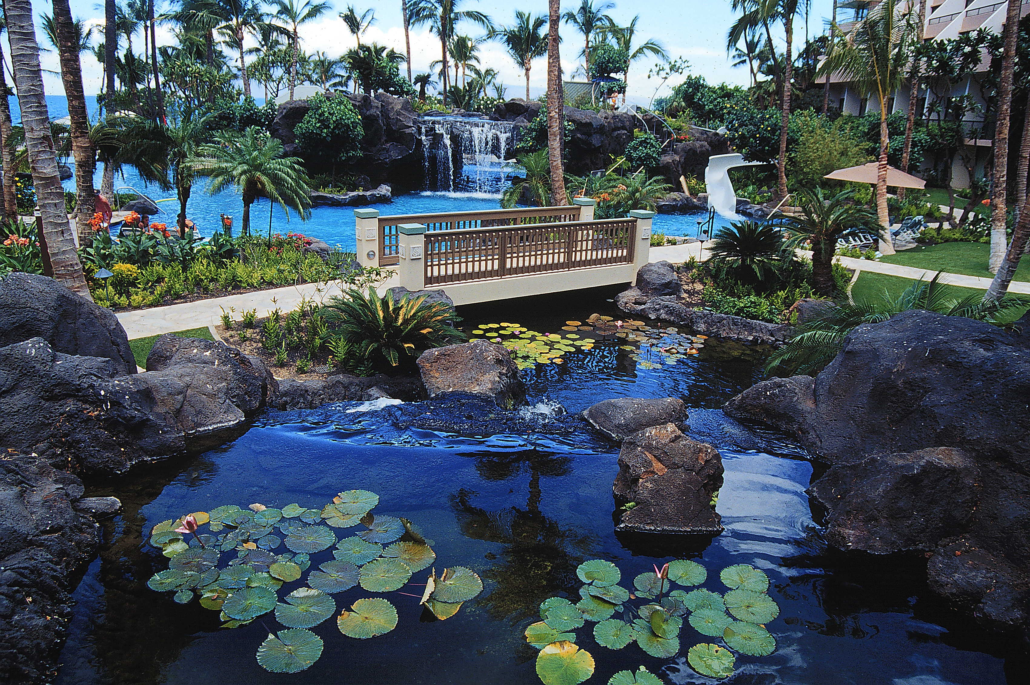 Pools and spas | Kapolei, HI | Pacific AquaScapes