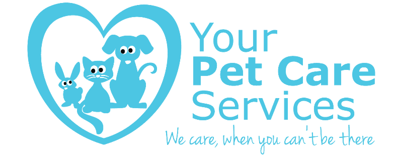 Pet Care in Colchester