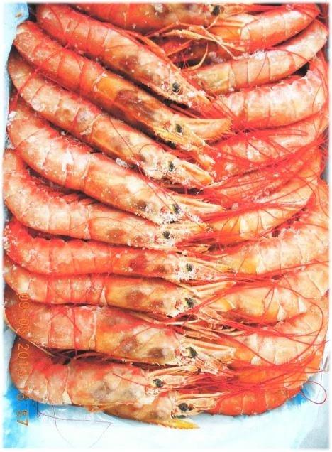 crostacei