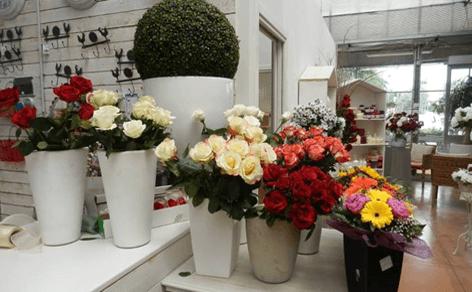 rose di diversi colori