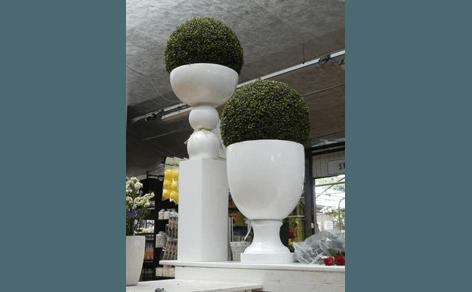 piante su vasi in terracotta