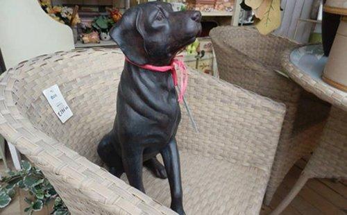 statua di un cane nera