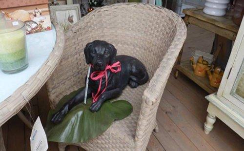 statua di un cane  seduto su una poltrona