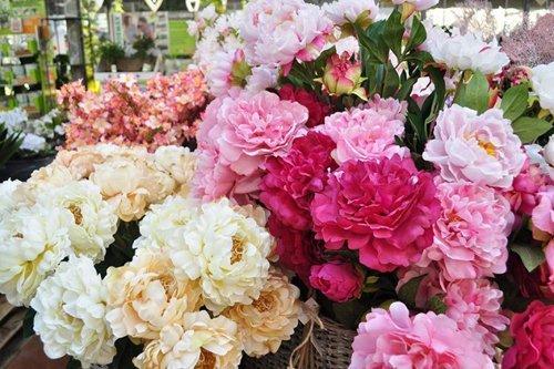 assortimento fiori di diverso tipo
