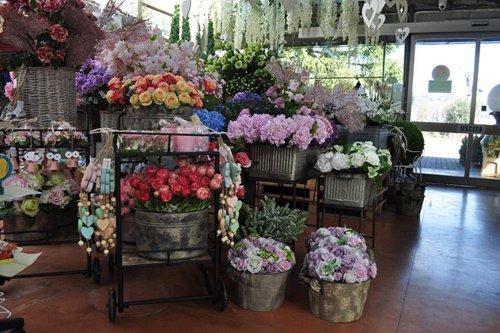 rose colorate per il giardinaggio