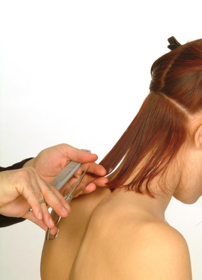 Selvaggio Hair Dressing - Roma
