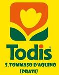 TODIS S.TOMMASO D'AQUINO - PRATI - LOGO