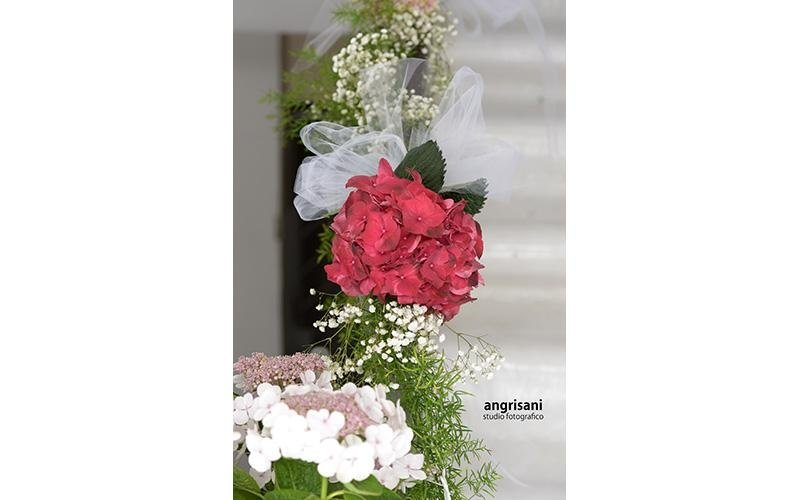 due fiori bianchi e un fiore fucsia