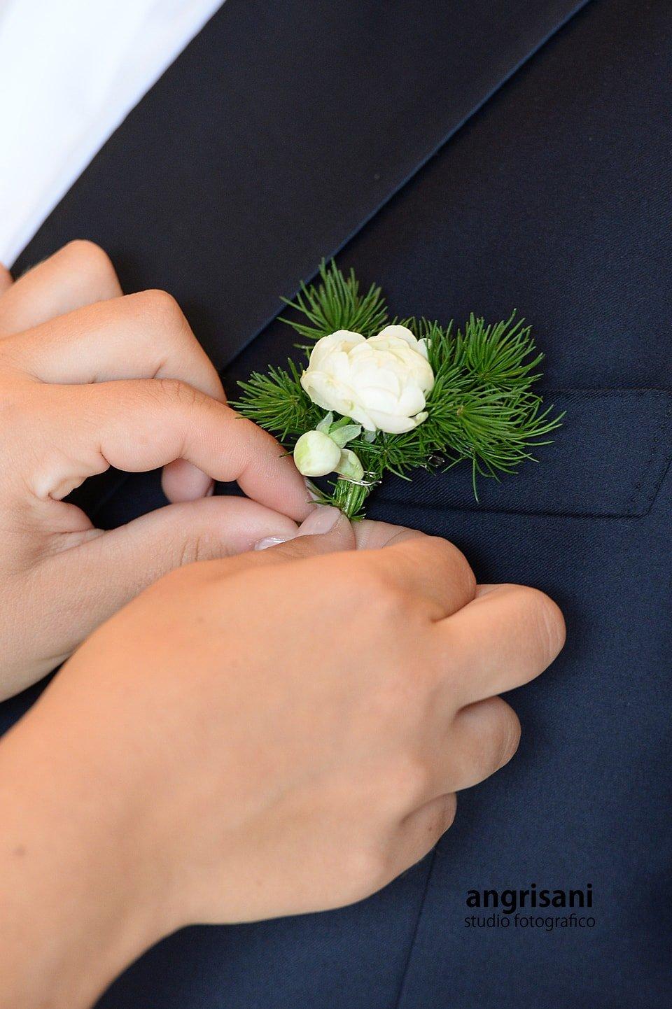 due mani con piccolo fiore