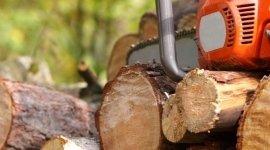 commercializzazione del legno, scavi, lavori forestali
