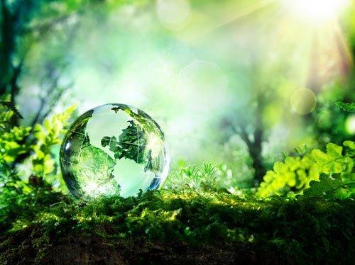 una palla di vetro in un giardino