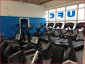 A row of cardio machines