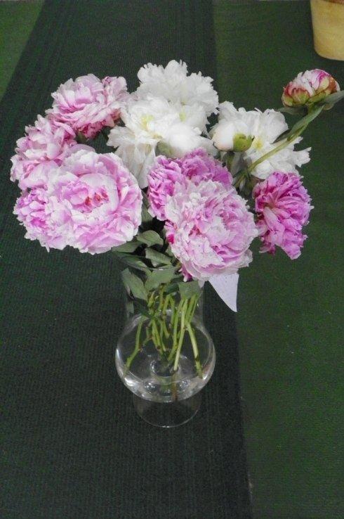 vendita di fiori dal colore bianco e rosa