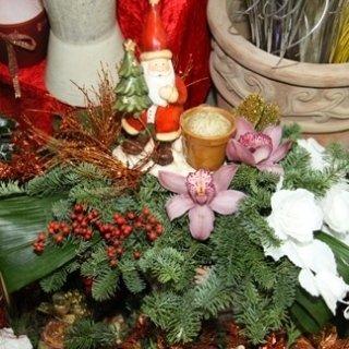 piante addobbi natalizie