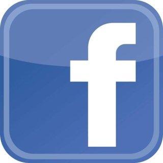 Leone di Damasco su Facebook