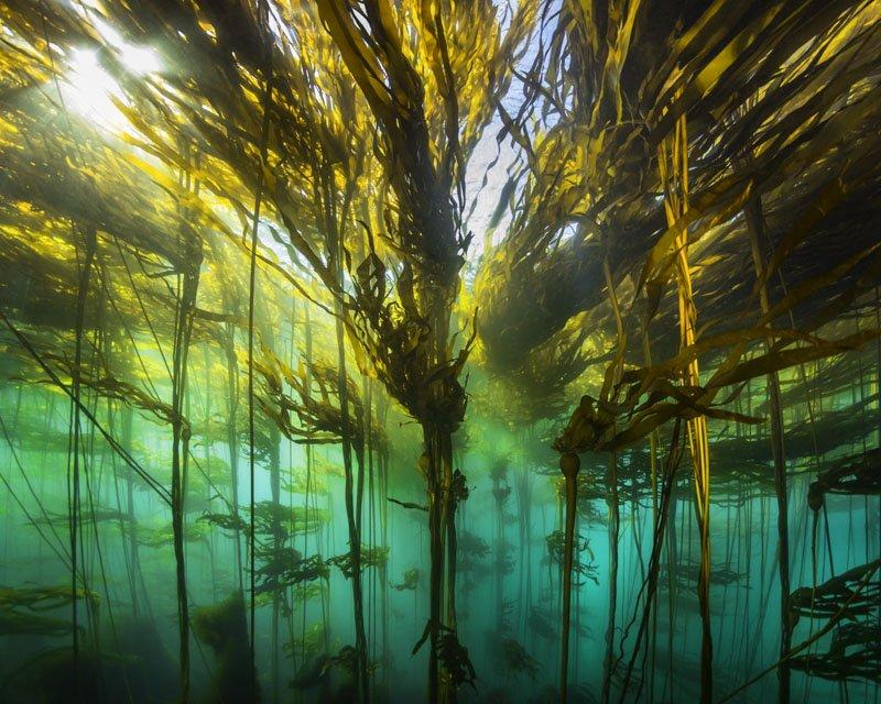 Underworld by Eiko Jones - Photography