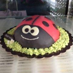 torta coccinella per compleanno ascoli piceno