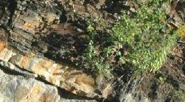 analisi dei terreni, geologia, topografia