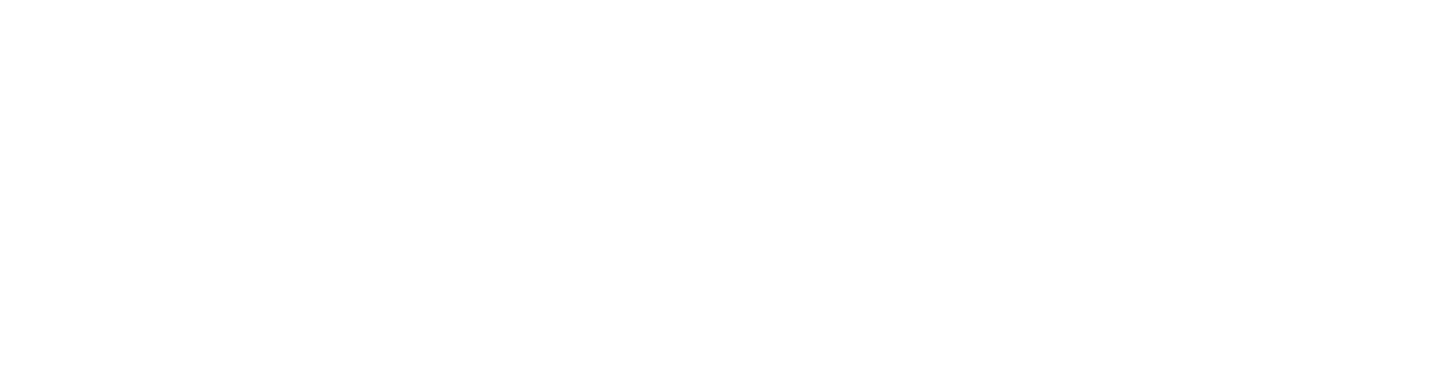 Sades New Zealand logo