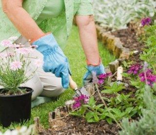 giardinaggio, manutenzione aree verdi, realizzazione aiuole