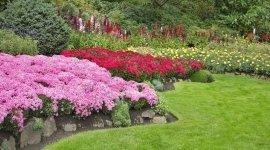 progettazione giardini, manutenzione giardini pubblici, realizzazione giardini privati