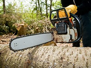 chainsaw-and-tree