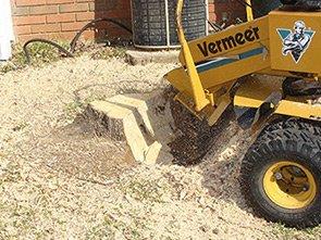 tree-stump-machine