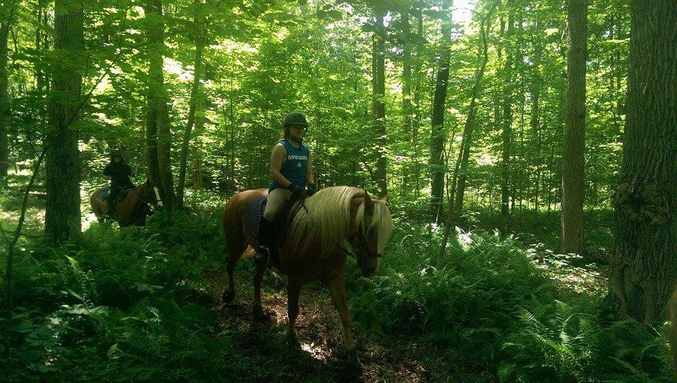 Rosebud Summer Camp Trail Rids