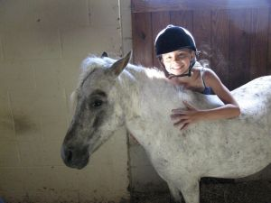 Rosebud Stables Summer Camp Horses