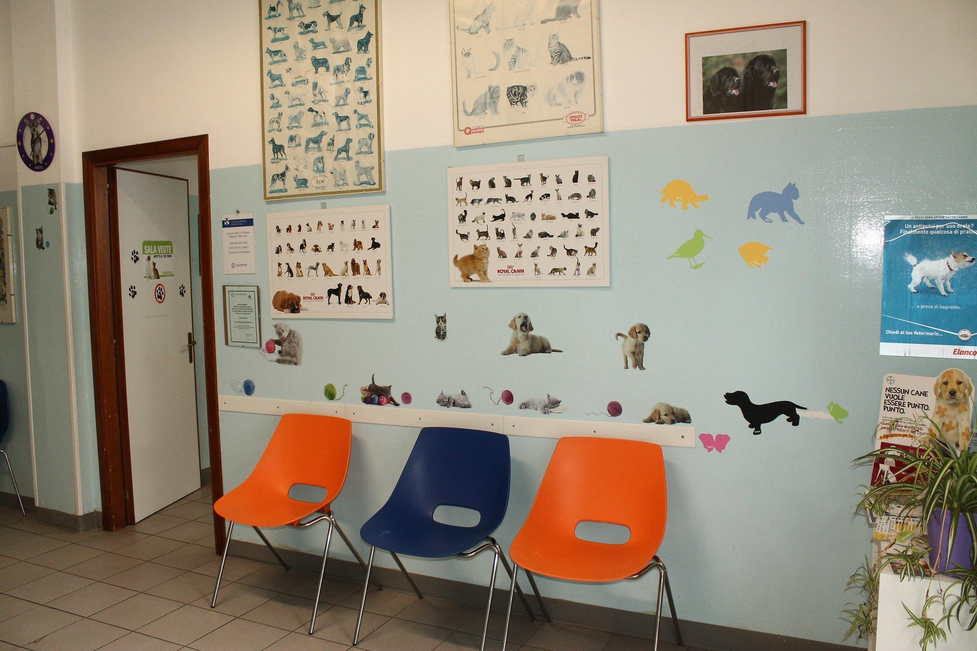 sala di aspetto di una clinica veterinaria