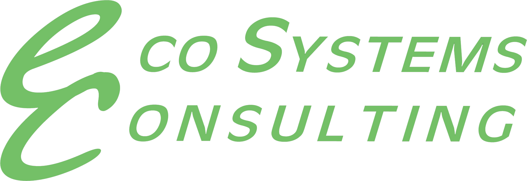 Eco System Consulting logo
