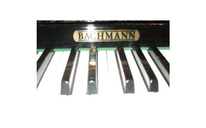 Bachmann, prestigioso marchio famoso per la squisita abilittà artigianale con cui da decenni costruisce pianoforti acustici, fonde nella linea RPT tutta la sua esperienza sugli strumenti classici con le più sofisticate tecnologie digitali di generazione sonora.