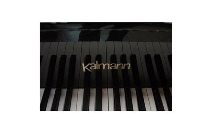 PIANOFORTI KALMANN: Eleganza, affidabilità e qualità.
