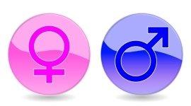consulenza sulla contraccezione, fertilità