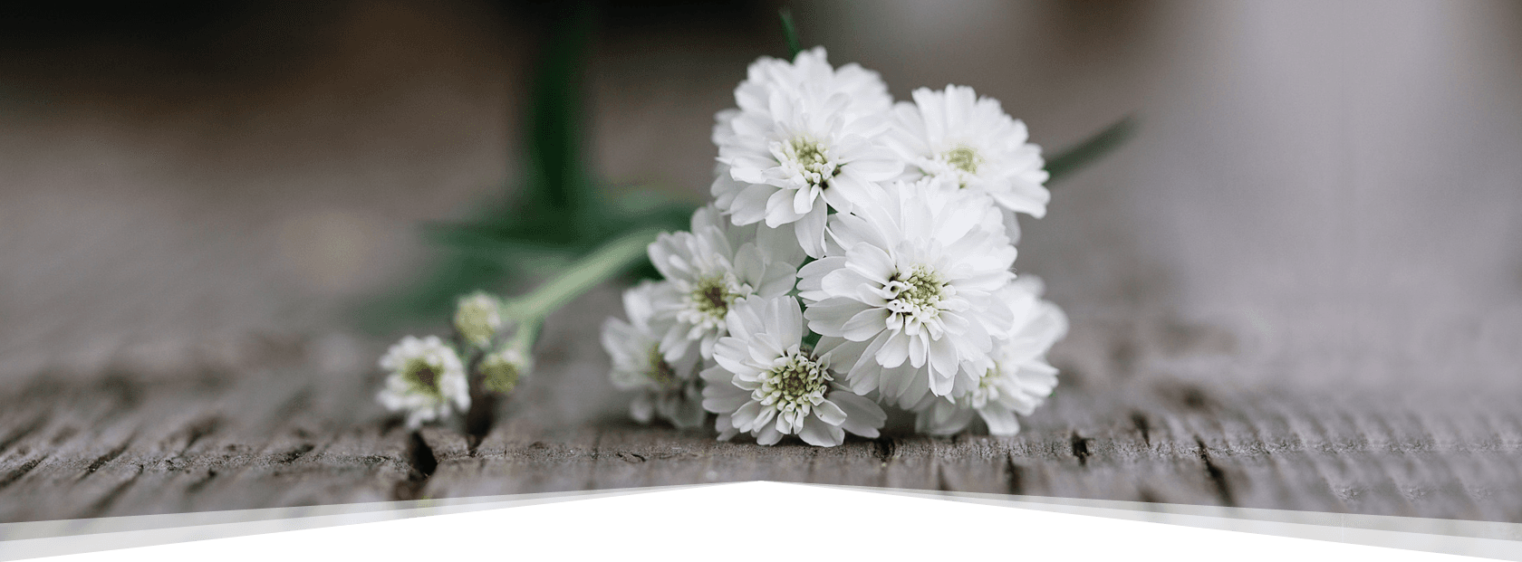 Funeral plans by funeral directors in south wigston white flower izmirmasajfo