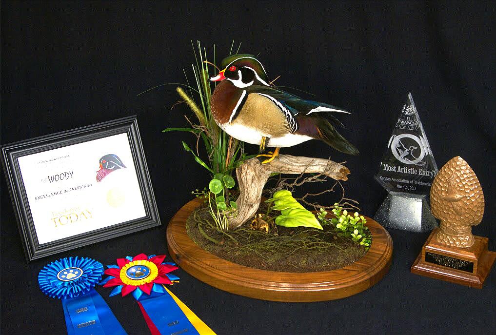 Award Winning Blue Ribbon Birds