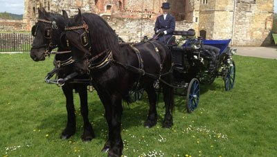 Two black horses and a black coach