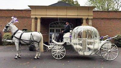 A white horse and white glass carriage outside a wedding venue