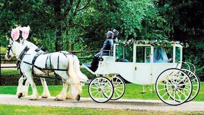 White horses pulling a white wedding carriage through a park