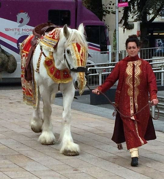 A horse decked out in red and gold for an Indian wedding, led by a lady in a red sari