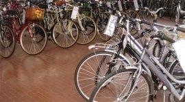 servizio assistenza biciclette, riparazione biciclette, bici da città