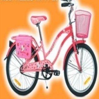 bicicletta da passeggio, bicicletta da corsa, due ruote