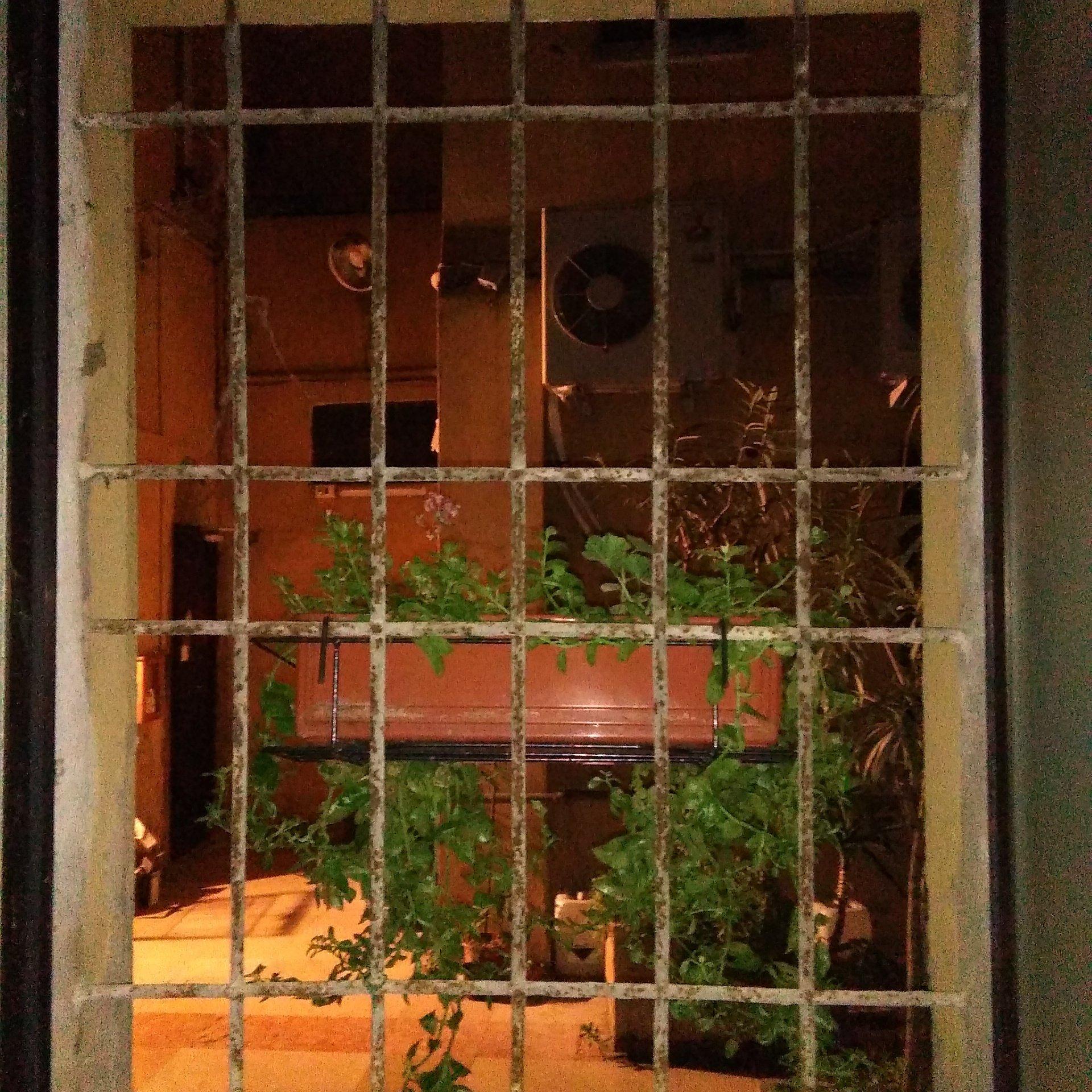 vista di una finestra con griglia in ferro