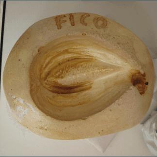 Stampo Fico, frutta martorana